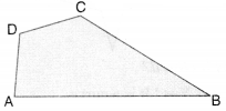 NCERT Solutions for Class 6 Maths Chapter 4 Basic Geometrical Ideas 17