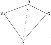 NCERT Solutions for Class 6 Maths Chapter 4 Basic Geometrical Ideas 24