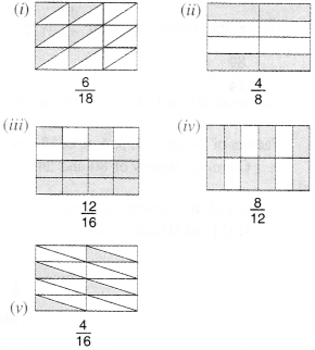 NCERT Solutions for Class 6 Maths Chapter 7 Fractions 25
