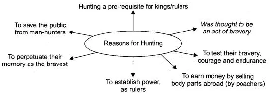 NCERT Solutions for Class 10 English Literature Chapter 2 Mrs. Packletide's Tiger 2