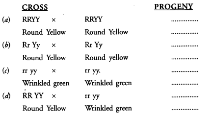 NCERT Exemplar Solutions for Class 10 Science Chapter 9 Heredity and Evolution image - 1