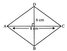 RD Sharma Class 8 Solutions Chapter 17 Understanding Shapes III Ex 17.2 11