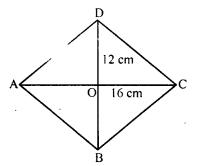 RD Sharma Class 8 Solutions Chapter 17 Understanding Shapes III Ex 17.2 3