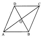 RD Sharma Class 8 Solutions Chapter 17 Understanding Shapes III Ex 17.2 8