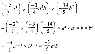 RD Sharma Class 8 Solutions Chapter 6 Algebraic Expressions and IdentitiesEx 6.3 13
