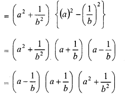 RD Sharma Class 8 Solutions Chapter 7 Factorizations Ex 7.5 2