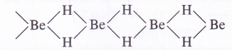 NCERT Solutions for Class 11 Chemistry Chapter 10 The s-Block Elements 14