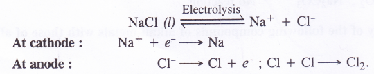 NCERT Solutions for Class 11 Chemistry Chapter 10 The s-Block Elements 46