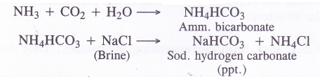 NCERT Solutions for Class 11 Chemistry Chapter 10 The s-Block Elements 48