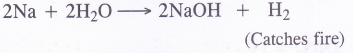 NCERT Solutions for Class 11 Chemistry Chapter 10 The s-Block Elements 59
