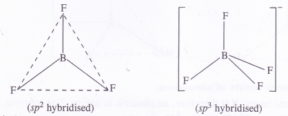 NCERT Solutions for Class 11 Chemistry Chapter 11 The p-Block Elements 11