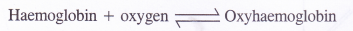 NCERT Solutions for Class 11 Chemistry Chapter 11 The p-Block Elements 14