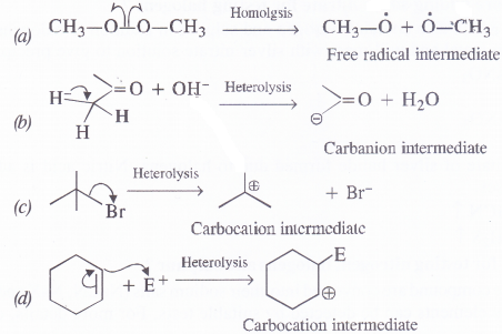NCERT Solutions for Class 11 Chemistry Chapter 12 Organic Chemistry Some Basic Principles and Techniques 15