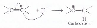 NCERT Solutions for Class 11 Chemistry Chapter 12 Organic Chemistry Some Basic Principles and Techniques 17