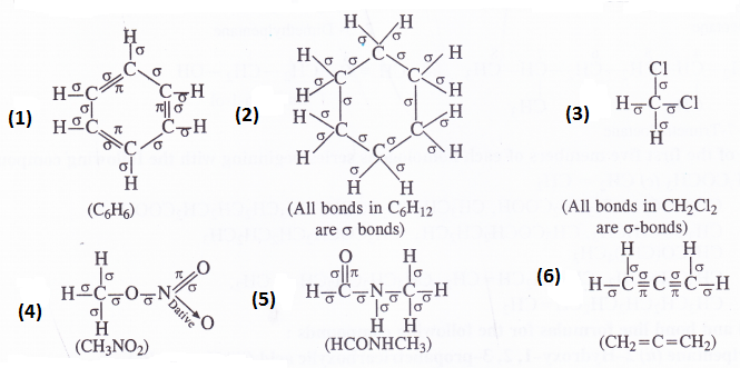 NCERT Solutions for Class 11 Chemistry Chapter 12 Organic Chemistry Some Basic Principles and Techniques 2