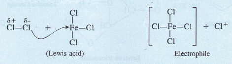 NCERT Solutions for Class 11 Chemistry Chapter 13 Hydrocarbons 23