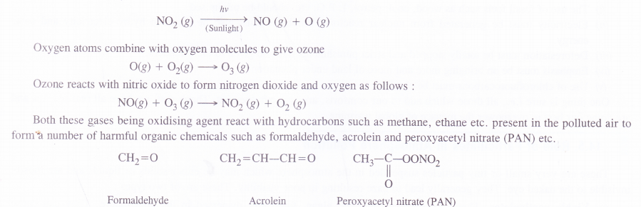 NCERT Solutions for Class 11 Chemistry Chapter 14 Environmental Chemistry 2