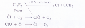 NCERT Solutions for Class 11 Chemistry Chapter 14 Environmental Chemistry 3