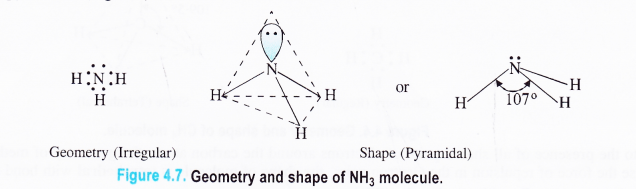 NCERT Solutions for Class 11 Chemistry Chapter 4 Chemical Bonding and Molecular Structure 9