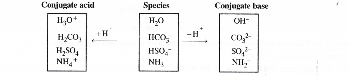 NCERT Solutions for Class 11 Chemistry Chapter 7 Equilibrium 32