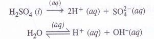 NCERT Solutions for Class 11 Chemistry Chapter 8 Redox Reactions 43
