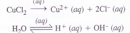 NCERT Solutions for Class 11 Chemistry Chapter 8 Redox Reactions 44