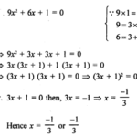 RS Aggarwal Class 10 Solutions Chapter 10Quadratic Equations Ex 10A 40