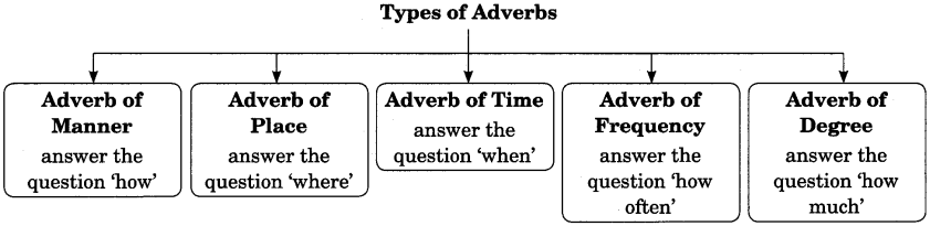 Adverb Exercises For Class 7 Cbse With Answers