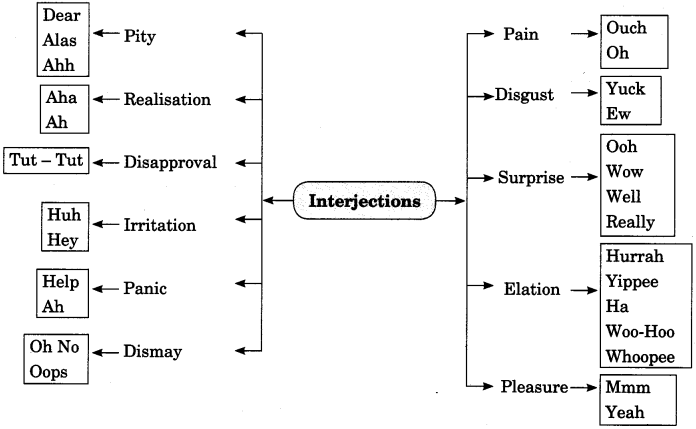 Interjections Exercises for Class 7 CBSE With Answers
