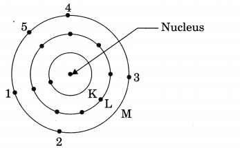 Structure of the Atom Class 9 Extra Questions and Answers Science Chapter 4 img 2