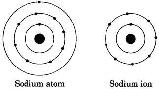 Structure of the Atom Class 9 Extra Questions and Answers Science Chapter 4 img 4