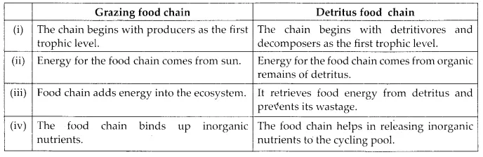 NCERT Solutions for Class 12 Biology Chapter 14 Ecosystem 6.1
