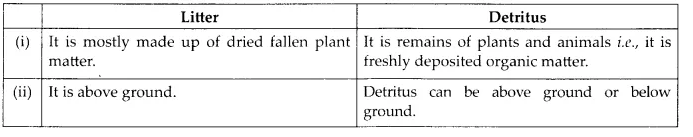 NCERT Solutions for Class 12 Biology Chapter 14 Ecosystem 6.3