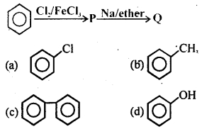 MCQ Questions for Class 12 Chemistry Chapter 10 Haloalkanes and Haloarenes with Answers 7