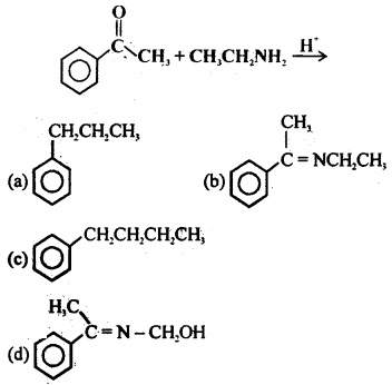 MCQ Questions for Class 12 Chemistry Chapter 12 Aldehydes, Ketones and Carboxylic Acids with Answers 8