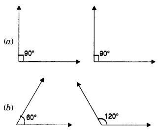 MCQ Questions for Class 7 Maths Chapter 5 Lines and Angles with Answers 3