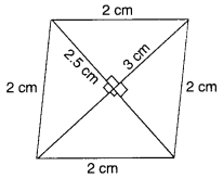 MCQ Questions for Class 8 Maths Chapter 11 Mensuration with Answers 19