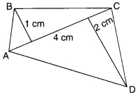 MCQ Questions for Class 8 Maths Chapter 11 Mensuration with Answers 21