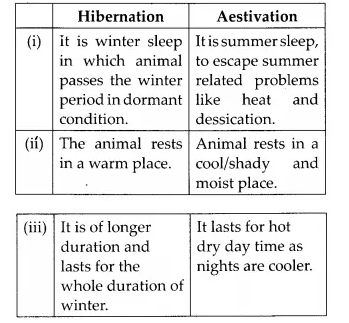 NCERT Solutions for Class 12 Biology Chapter 13 Organisms and Populations Q10.1