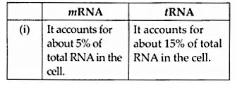 NCERT Solutions for Class 12 Biology Chapter 6 Molecular Basis of Inheritance Q8.5
