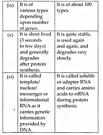 NCERT Solutions for Class 12 Biology Chapter 6 Molecular Basis of Inheritance Q8.8