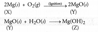 Chemical Reactions and Equations Class 10 Important Questions Science Chapter 1 image - 20