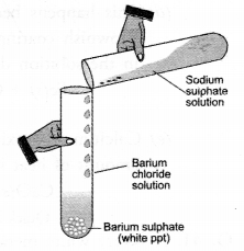 Chemical Reactions and Equations Class 10 Important Questions Science Chapter 1 image - 26