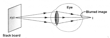 HOTS Questions for Class 10 Science Chapter 11 Human Eye and Colourful World image - 4