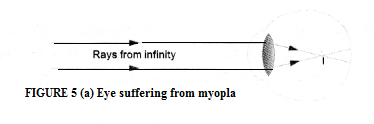 Human Eye and Colourful World Class 10 Important Questions Science Chapter 11 image - 5
