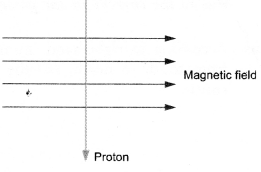 Magnetic Effects of Electric Current Class 10 Important Questions Science Chapter 13 image - 18
