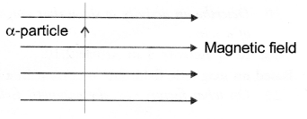Magnetic Effects of Electric Current Class 10 Important Questions Science Chapter 13 image - 21
