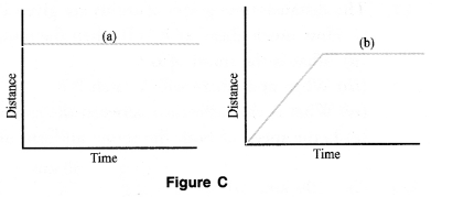 Motion Class 9 Important Questions Science Chapter 8 image - 10