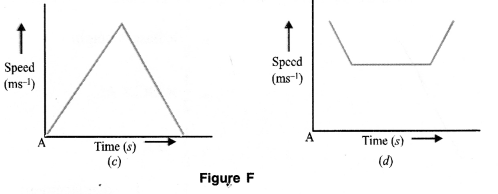 Motion Class 9 Important Questions Science Chapter 8 image - 12