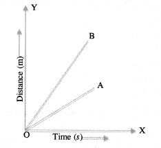Motion Class 9 Important Questions Science Chapter 8 image - 18
